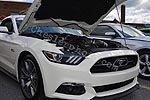 2015 Mustang Rally Car Show